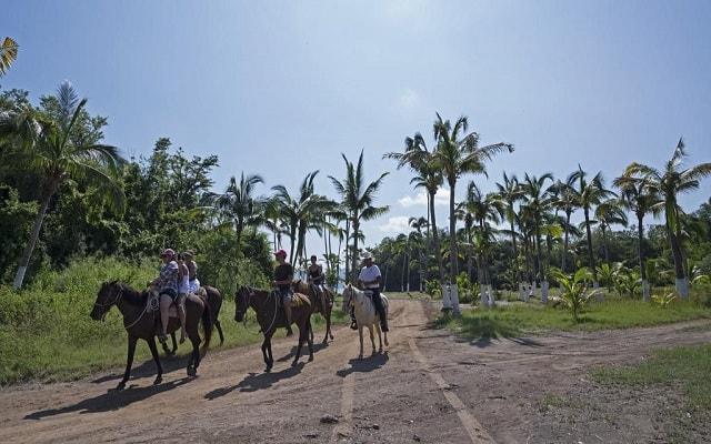 Hotel Los Ángeles Locos, disfruta un paseo en caballo