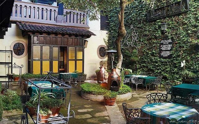 Hotel Mansión Iturbe, jardines