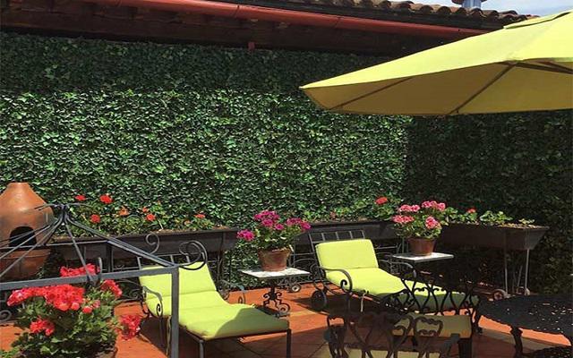 Hotel Mansión Iturbe, relájate en la terraza
