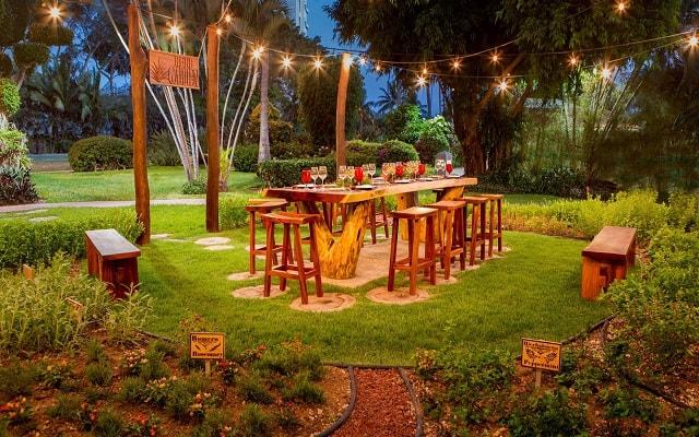 Hotel Marriott Puerto Vallarta Resort & Spa, ambientes únicos