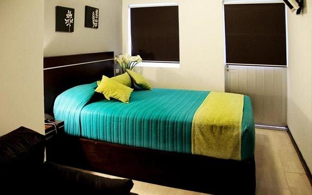 Hotel Misión Express Xalapa Centro, espacios diseñados para tu descanso