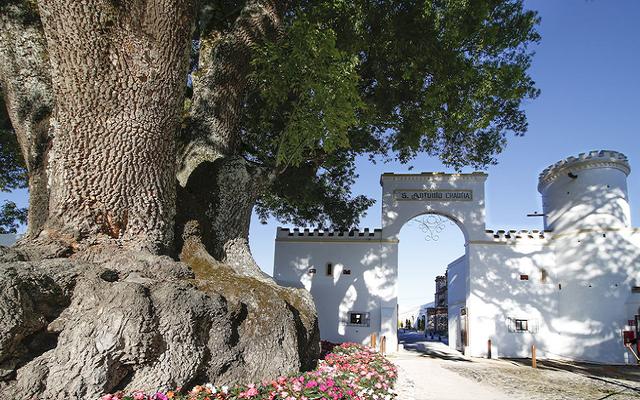 Hotel Misión Grand Ex-Hacienda de Chautla cuenta con instalaciones de estilo colonial
