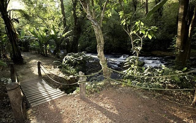 Hotel Misión Grand Valle de Bravo, relájate en un ambiente natural