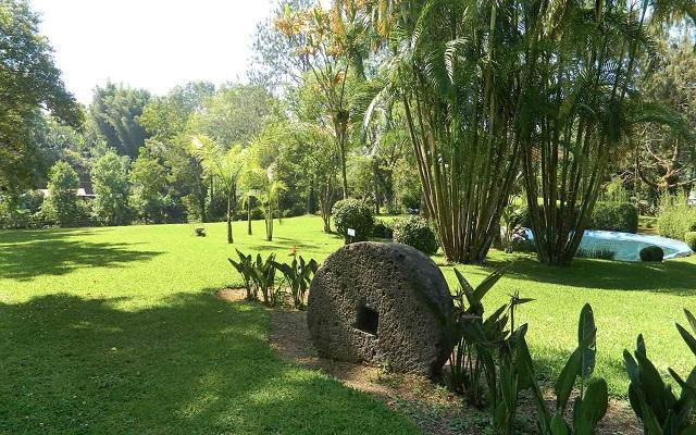 Hotel Misión Los Cocuyos, pasea en los bellos jardines
