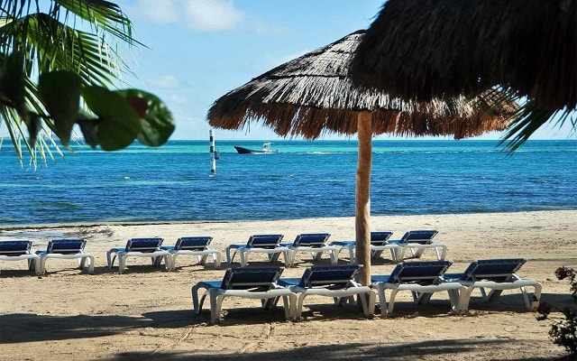 Hotel Oasis Palm, amenidades en cada sitio
