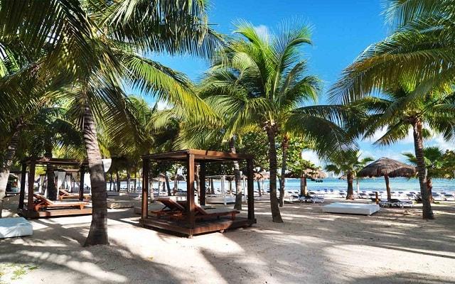 Hotel Oasis Palm, relájate en la playa