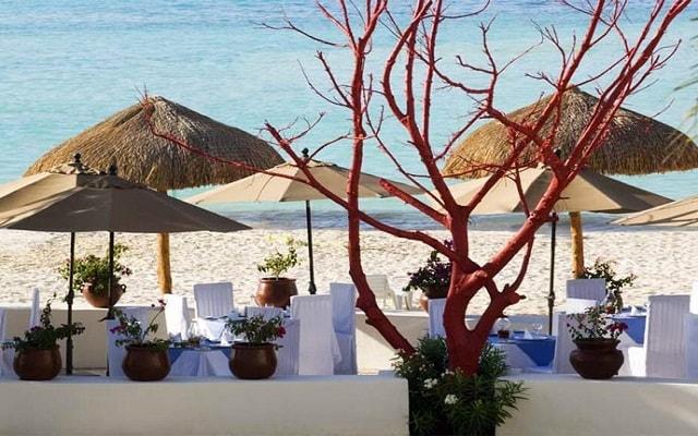 Hotel Oasis Palm, vistas increíbles