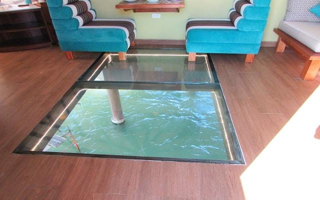 Hotel Palafitos Overwater Bungalows by Karisma, habitaciones con pisos de cristal que te permiten ver el mar