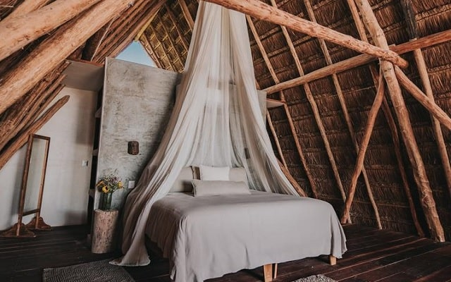 Hotel Papaya Playa, cómodas habitaciones