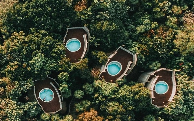 Hotel Papaya Playa, disfruta la naturaleza