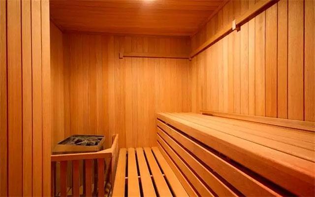 Hotel Plaza Suites México City 2404, sauna