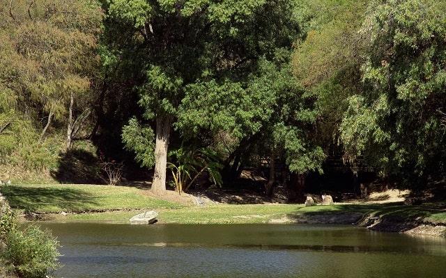 Hotel Rancho San Diego Grand Spa Resort, pasea por el jardín