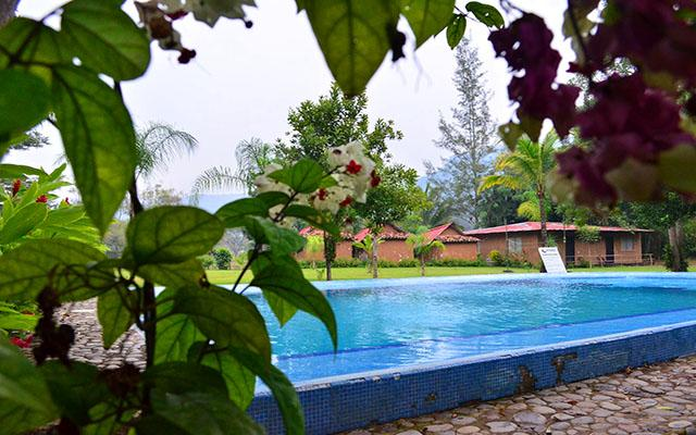 Hotel Campamento Río Salvaje cuenta con una alberca rodeada de vegetación