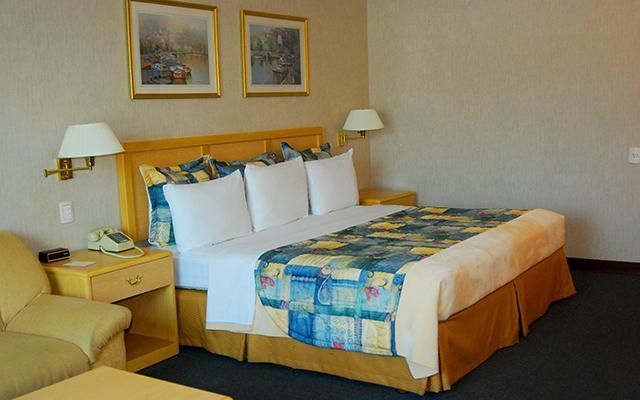 Todas las habitaciones están alfombradas.