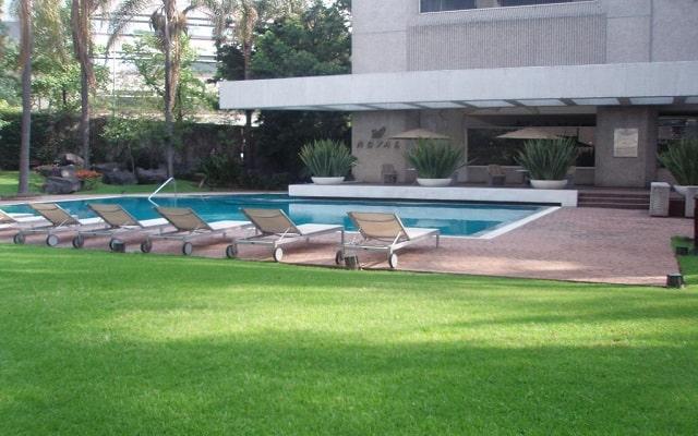 Hotel Royal Pedregal, disfruta cada instante de tu descanso