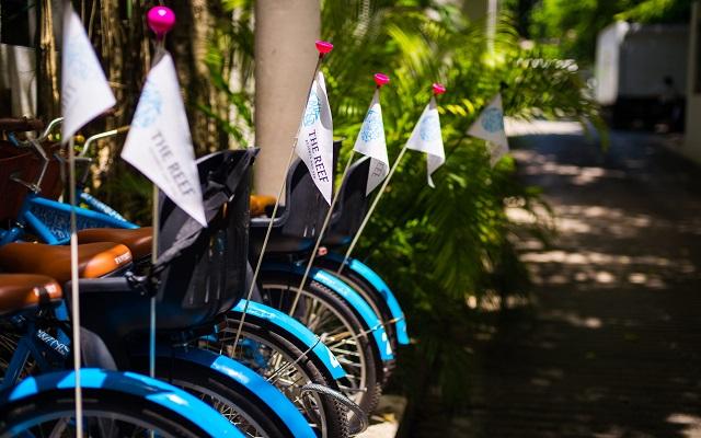Hotel The Reef Playacar, el hotel te presta bicicletas