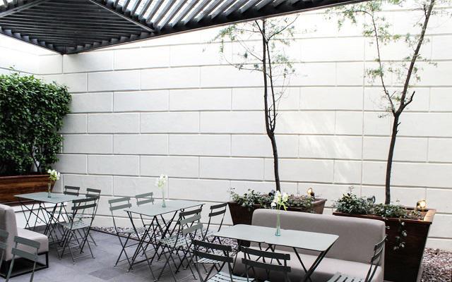 Hotel Wyndham Garden Polanco, sitios perfectos para relajarte