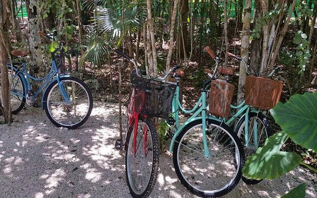 Jungle Secrets Riviera Maya Hotel Suites Boutique, anímate a dar un paseo en bicicleta