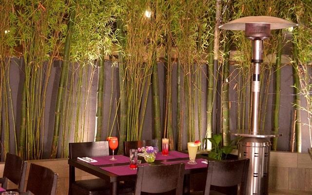 LaiLa Hotel CDMX, sitio perfecto para disfrutar tus alimentos