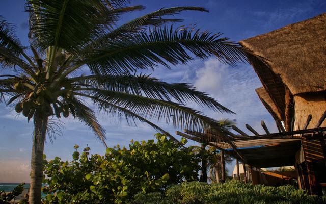 Disfruta del Caribe Mexicano en Tulum