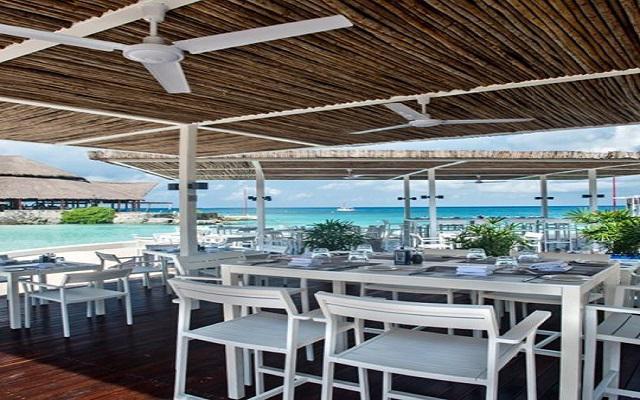 Presidente Intercontinental Cozumel Resort, lugar perfecto para degustar tus alimentos