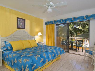 hotel villa palmar puerto vallarta:
