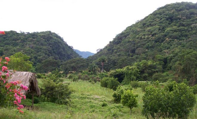 Bosque Tropical La Floreña