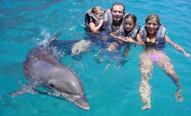 Delfiniti