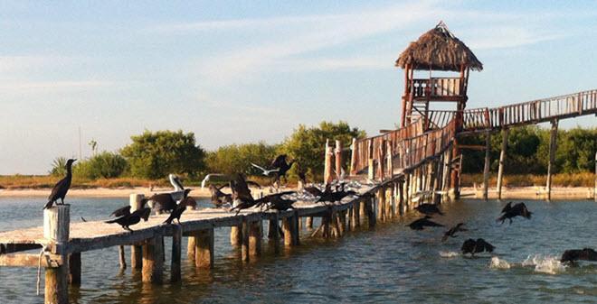 Isla Pájaros