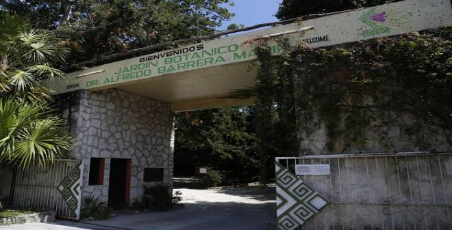 Jardín Botánico Dr. Alfredo Barrera Marín