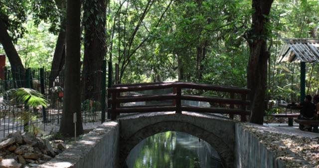 Jardín Botánico Dr. Faustino Miranda
