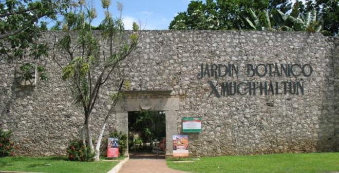 Jardin botanico xmuch haltun campeche informaci n de for Como ir al jardin botanico