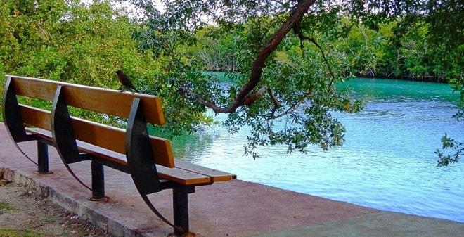 Jardín del Arte Cancún