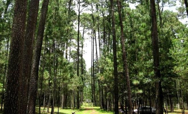 Parque Ecoturístico Grutas de Rancho Nuevo Chiapas