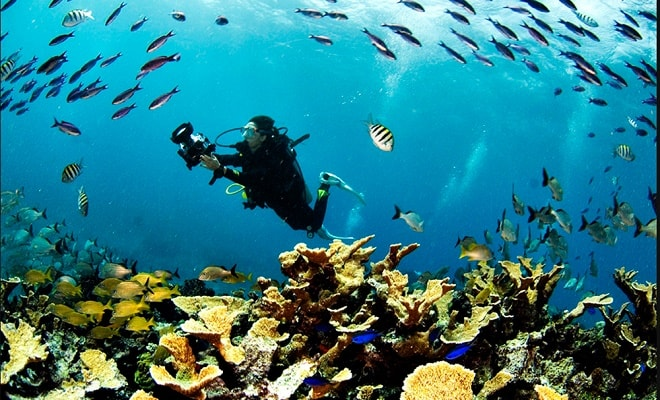 Parque Nacional Arrecifes de Cozumel