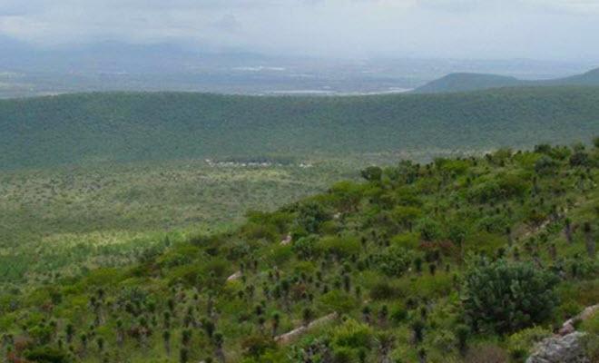 Parque nacional El Cimatario