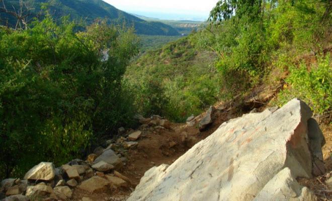 Reserva de la Biósfera Sierra de la Laguna
