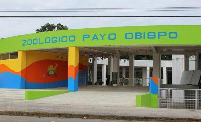 Zoológico Payo Obispo Chetumal