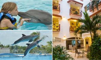 Nado con delfines + Hotel Xtudio Comfort Hotel By Xperience Hotels