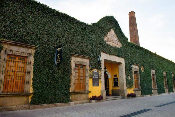 Tour del Tequila en Tequila, Jalisco