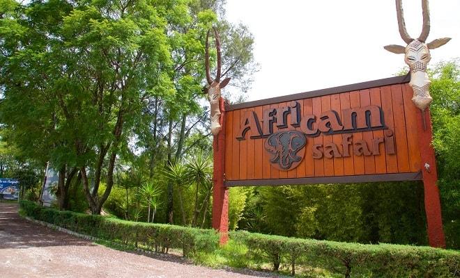 Africam Safari desde Puebla