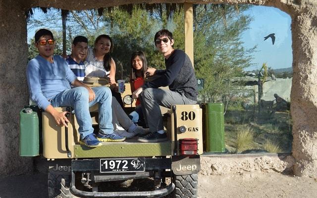 Africam Safari desde Puebla, Disfruta de un paseo tipo safari