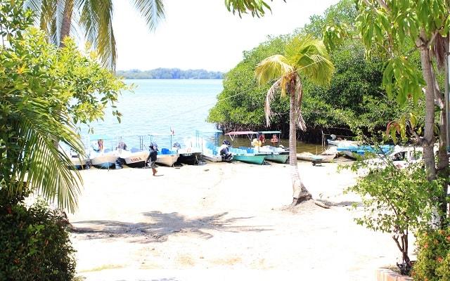 Bioluminiscencia y Liberacion de Tortugas en Huatulco, emprende tu camino hacia la Laguna de Manialtepec