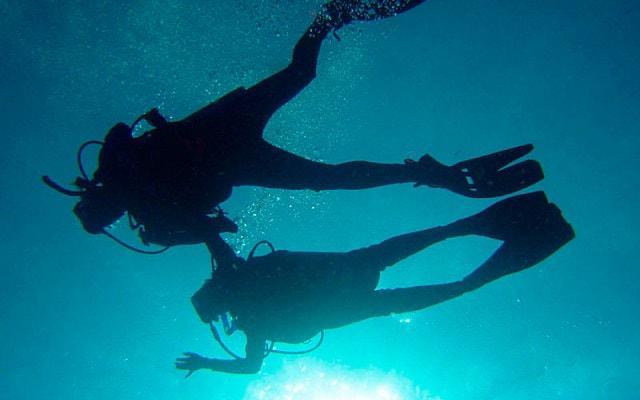 Buceo en Cozumel, una experiencia fantástica tanto para buzos principiantes como experimentados
