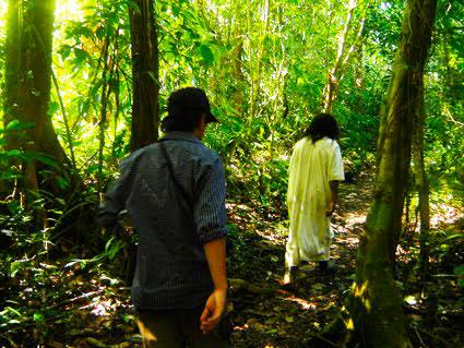 Caminando por la Selva Lacandona