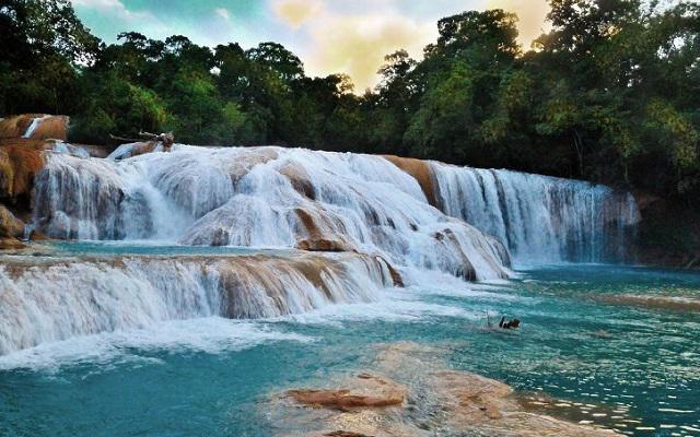 Tour cascadas agua azul misol h y ruinas de palenque for Cascadas artificiales de agua para piscinas