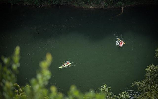 Cenote Miguel Colorado Champotón, disfruta de las aguas cristalinas