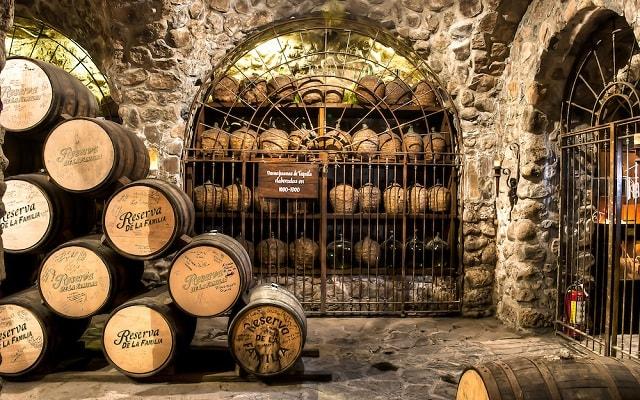 Circuito Cultural por Guadalajara, conoce el proceso y elaboración del tequila