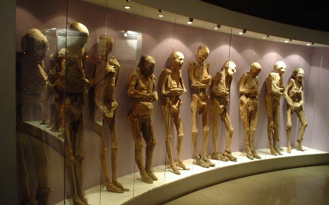 Circuito Cultural Ruta de la Independencia Guanajuato por 3 Días, llénate de horror al conocer increíbles historias de estos cuerpos momificados
