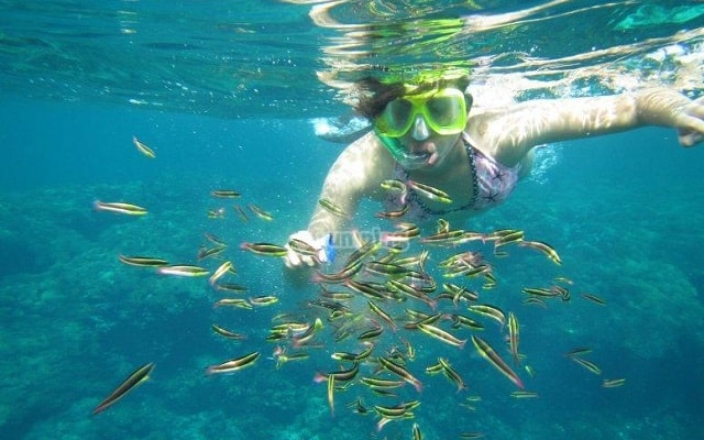 Circuito Ecoturístico por las Bahías de Huatulco y la Crucecita 4 días, podrás practicar snorkel